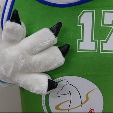 Hund-Kostuem-Maskottchen-Produktion-Firma
