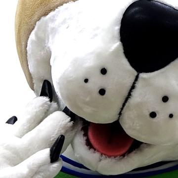 Hund-Kostuem-Maskottchen-Produktion